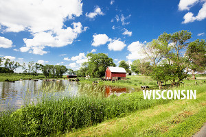 The Minneapolis Cherry, the cows that swam, and the Bass Lake Cheese Factory